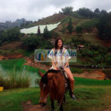 Horse Ride – Medellin city tours