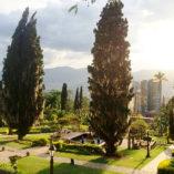Galeria-Medellin-Prime-Parks-600×600-2
